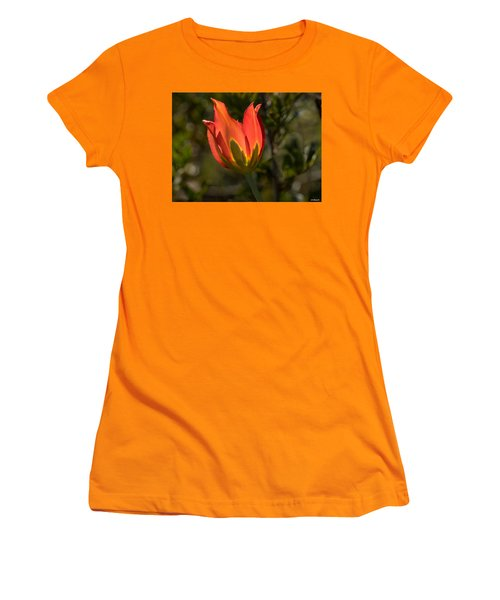 Women's T-Shirt (Junior Cut) featuring the photograph Flaming Beauyy by Uri Baruch