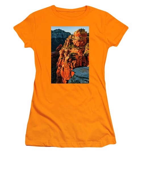 Flying Buttress 06-034 Women's T-Shirt (Junior Cut) by Scott McAllister