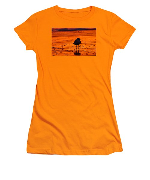 Gull Caught At Sunrise Women's T-Shirt (Junior Cut) by Allan Levin