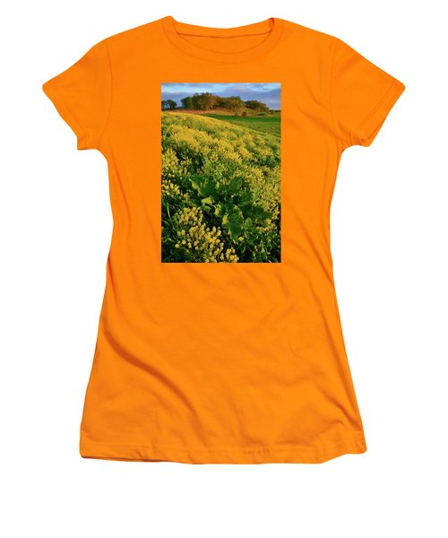 Hackmatack National Wildlife Refuge Wildflowers Women's T-Shirt (Athletic Fit)