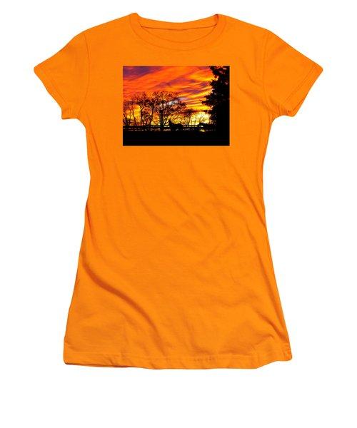 Horses And The Sky Women's T-Shirt (Junior Cut) by Donald C Morgan