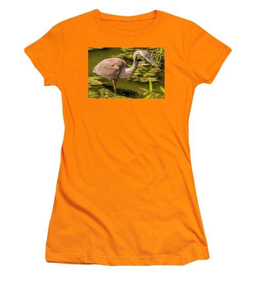 Juvenile Great Blue Heron Women's T-Shirt (Athletic Fit)