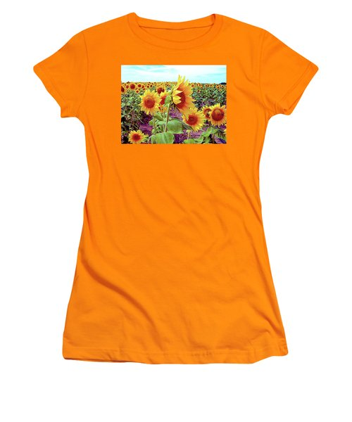 Kansas Sunflowers Women's T-Shirt (Athletic Fit)
