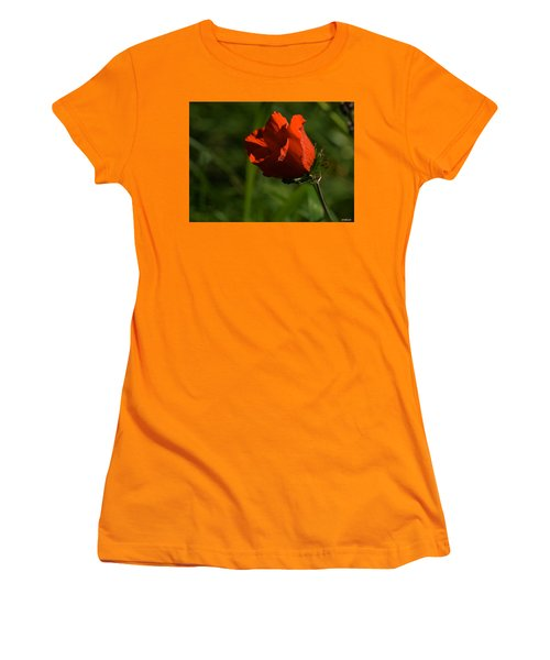 Women's T-Shirt (Junior Cut) featuring the photograph Morning Glory by Uri Baruch
