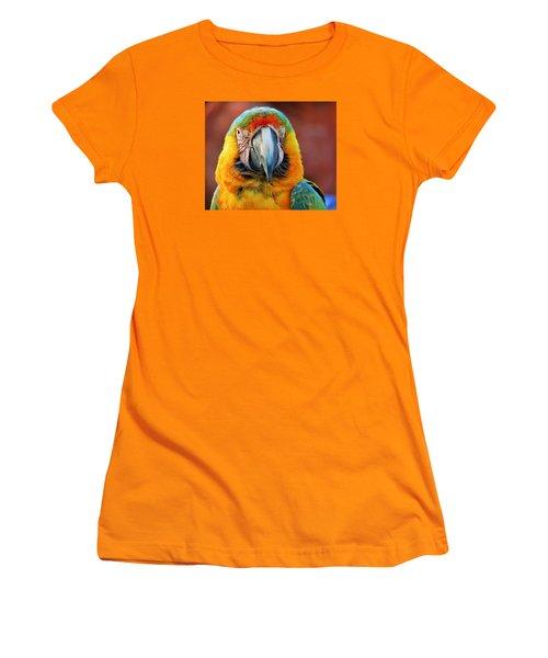 Parrot Portrait Women's T-Shirt (Athletic Fit)
