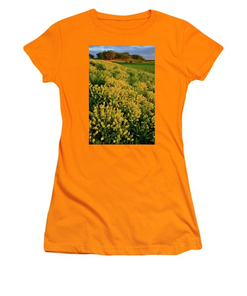 Prairie Of Wildflowers At Glacial Park Women's T-Shirt (Athletic Fit)