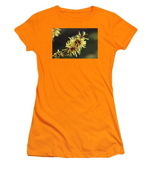 Women's T-Shirt (Junior Cut) featuring the photograph Spring by Wilhelm Hufnagl