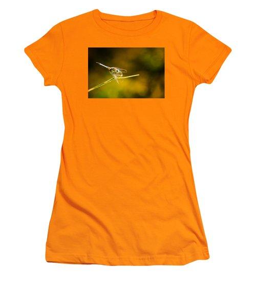 Summer Days Women's T-Shirt (Junior Cut) by Craig Szymanski
