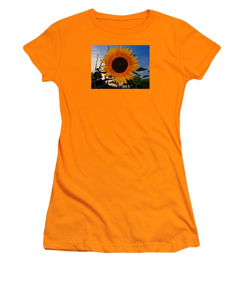 Sunflower In The Evening Women's T-Shirt (Junior Cut) by Ernst Dittmar