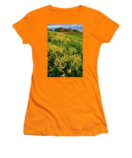 Sunset On Wildflowers In Glacial Park Mccd Women's T-Shirt (Athletic Fit)