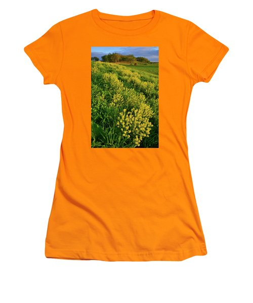 Wildflowers In Glacial Park Of Mccd Women's T-Shirt (Athletic Fit)