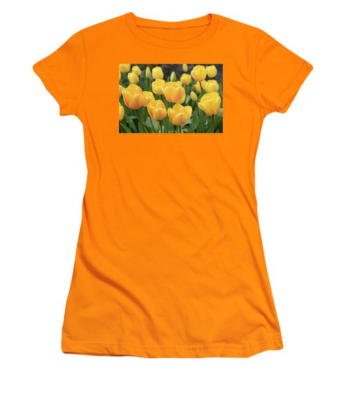 Yellow Tulips Women's T-Shirt (Athletic Fit)