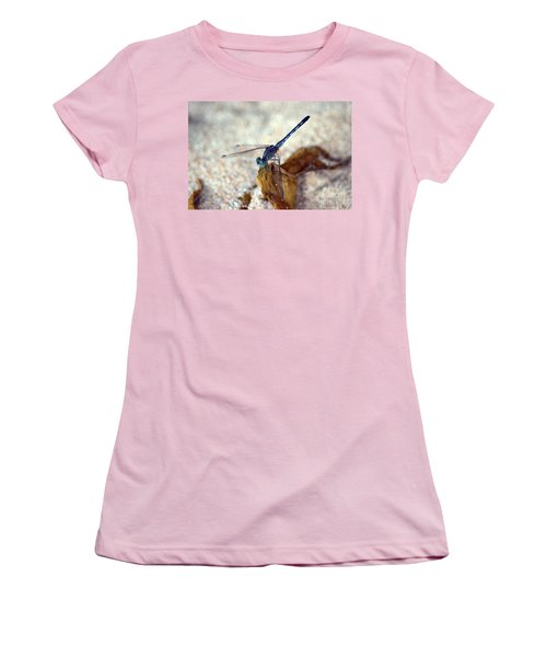 Blue Dragonfly Women's T-Shirt (Junior Cut) by Michelle Meenawong