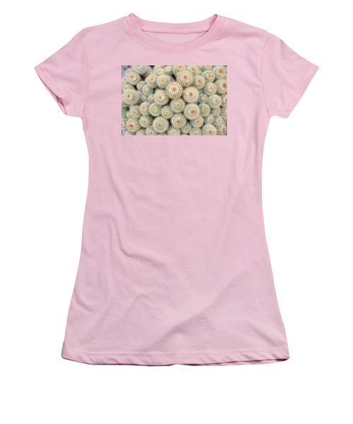 Cactus 35 Women's T-Shirt (Athletic Fit)
