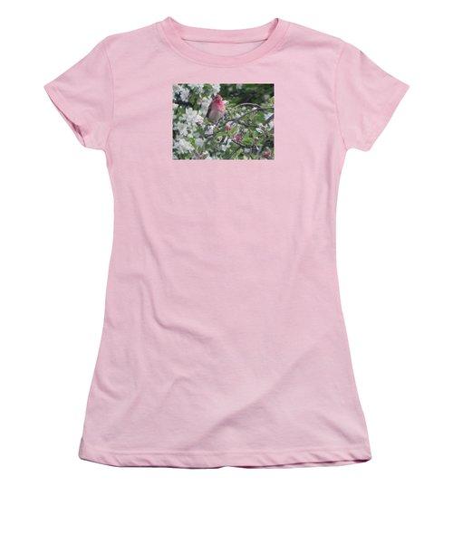 Finch In Apple Tree Women's T-Shirt (Junior Cut) by Christine Lathrop
