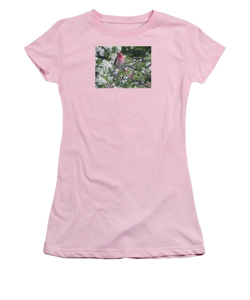 Finch In Apple Tree Women's T-Shirt (Athletic Fit)