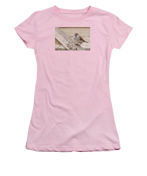 Women's T-Shirt (Junior Cut) featuring the photograph House Sparrow by Simona Ghidini