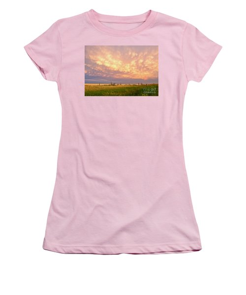 Southeastern New Mexico Women's T-Shirt (Junior Cut) by Roselynne Broussard