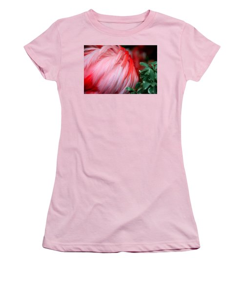 Women's T-Shirt (Junior Cut) featuring the photograph Flora And Fauna Number One by Lon Casler Bixby