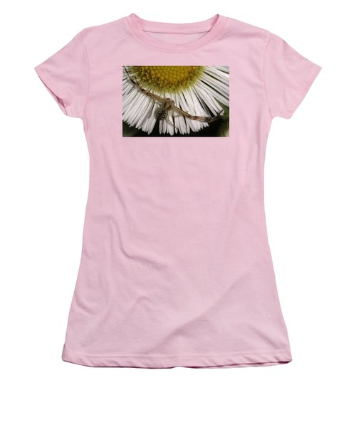 Women's T-Shirt (Junior Cut) featuring the photograph Flower Spider On Fleabane by Daniel Reed
