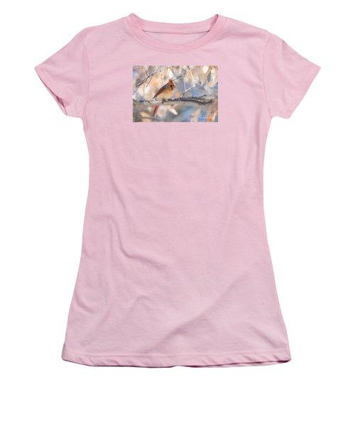 Winter Cardinal Women's T-Shirt (Junior Cut) by Debbie Green
