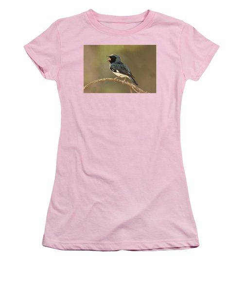 Black-throated Blue Warbler Women's T-Shirt (Athletic Fit)