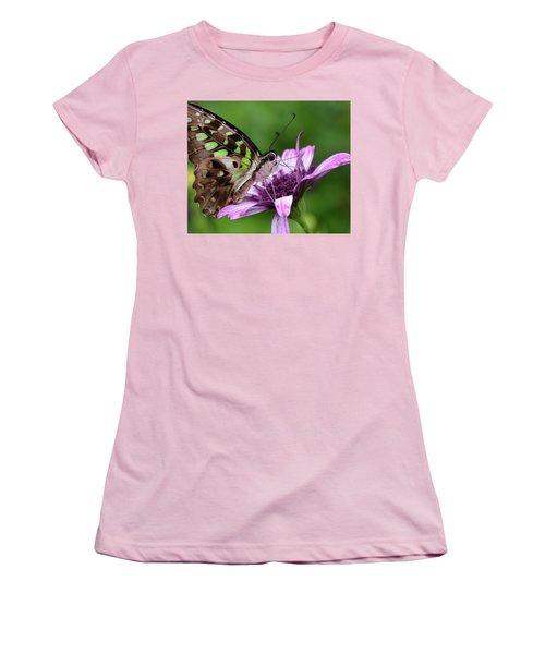 Tailed Jay Women's T-Shirt (Junior Cut) by Ronda Ryan