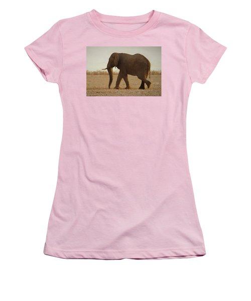 African Elephant Walk Women's T-Shirt (Junior Cut) by Ernie Echols
