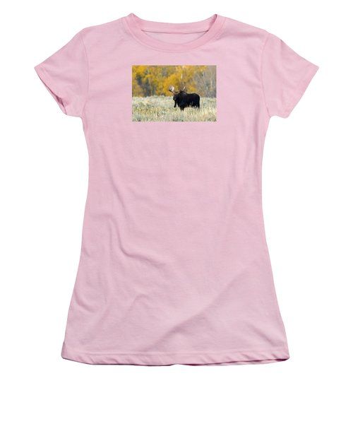 Autumn Splendor II Women's T-Shirt (Athletic Fit)