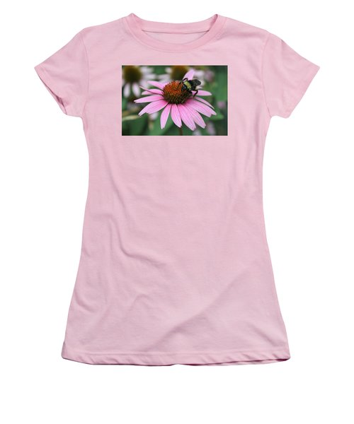 Bumble Bee On Pink Cone Flower Women's T-Shirt (Junior Cut) by Sheila Brown