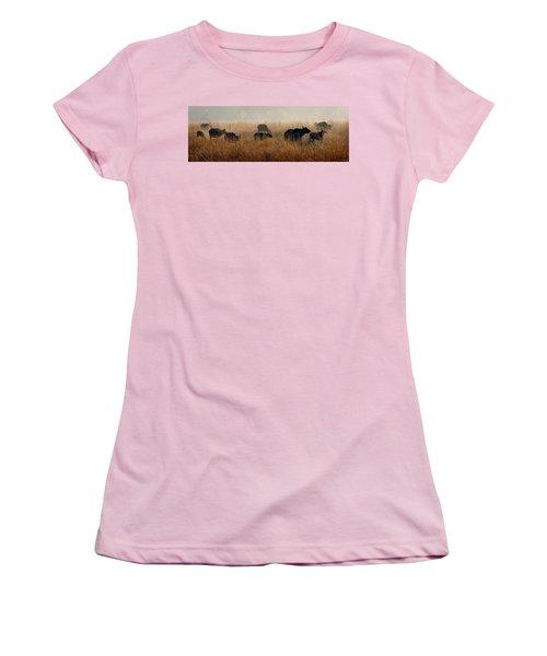 Cape Buffalo Herd Women's T-Shirt (Junior Cut) by Joe Bonita