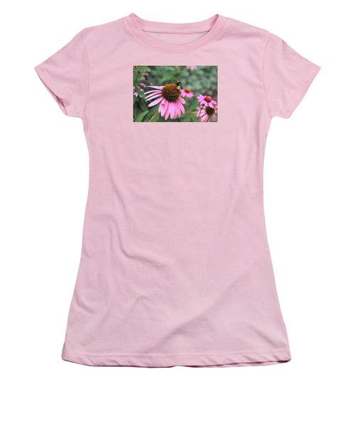 Women's T-Shirt (Junior Cut) featuring the photograph Cone Flowers And Bee by Sheila Brown