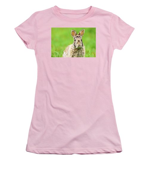 Cottontail Rabbit Women's T-Shirt (Athletic Fit)