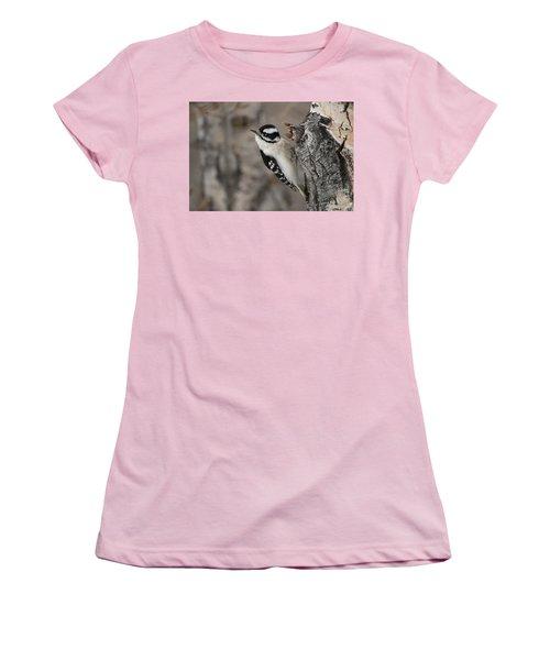 Female Downey Woodpecker Women's T-Shirt (Athletic Fit)