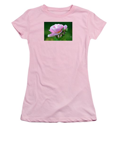 Flight Of The Pollinator. Women's T-Shirt (Junior Cut) by Terence Davis