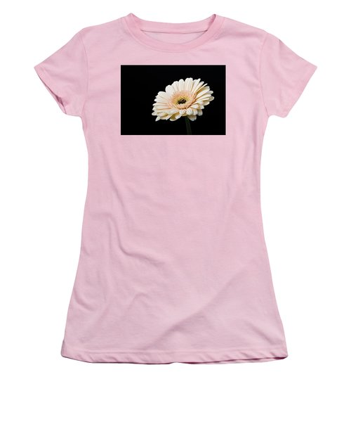 Women's T-Shirt (Athletic Fit) featuring the photograph Gerbera Daisy On Black II by Clare Bambers