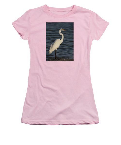 Great Egret In The Last Light Of The Day Women's T-Shirt (Athletic Fit)