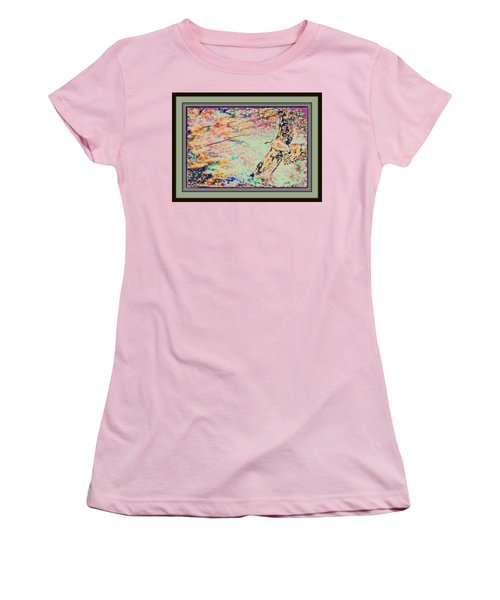 Hawk And Sky Women's T-Shirt (Athletic Fit)