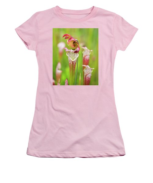 Women's T-Shirt (Athletic Fit) featuring the photograph Open Pitcher by Alan Raasch