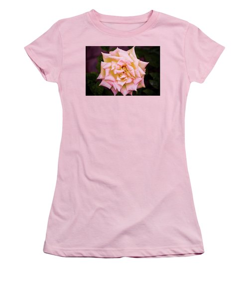 Peace Rose Women's T-Shirt (Junior Cut) by Donna G Smith