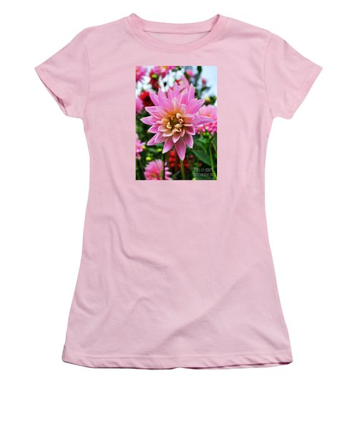 Women's T-Shirt (Junior Cut) featuring the photograph Pretty Pink Dahlia  by Mindy Bench