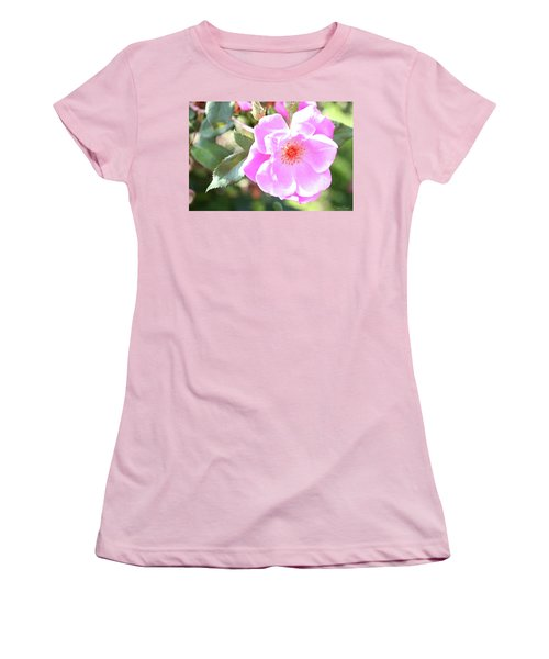 Pretty Pink Rose Women's T-Shirt (Athletic Fit)