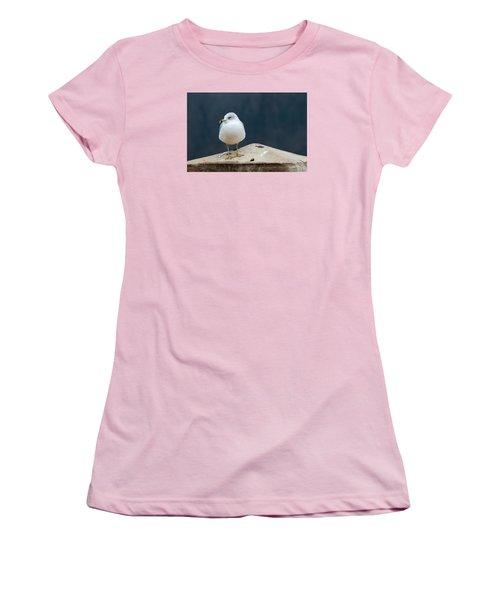Ring Bill Women's T-Shirt (Junior Cut) by Joe Scott