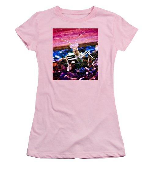 Sonoran Desert Ground Mantis Women's T-Shirt (Athletic Fit)