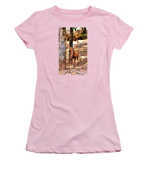 Watchfull Stag Women's T-Shirt (Junior Cut) by James Potts