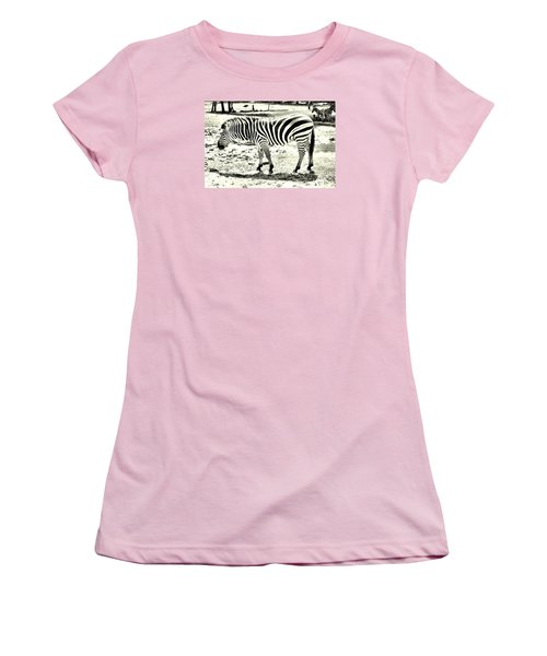 Zebra In Black And White Women's T-Shirt (Junior Cut) by James Potts