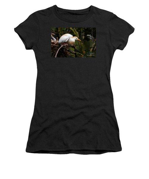Cattle Egret In A Tree Women's T-Shirt