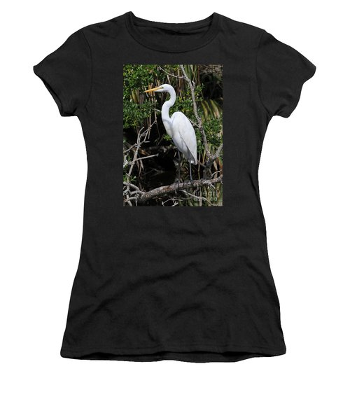 Great Egret Perched In Fallen Tree Women's T-Shirt