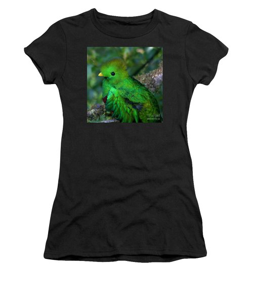 Quetzal Women's T-Shirt