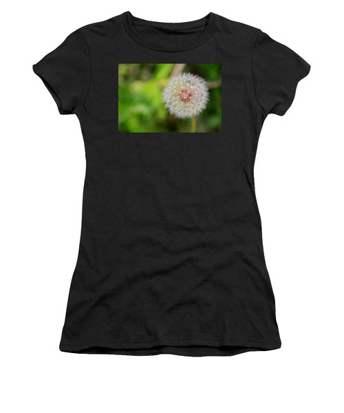 A Dandy Dandelion Women's T-Shirt